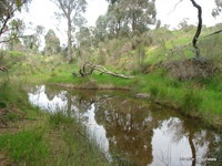 MIDGEE PARK: 200 ACRES NATURAL WATERCOURSE, GUNNING