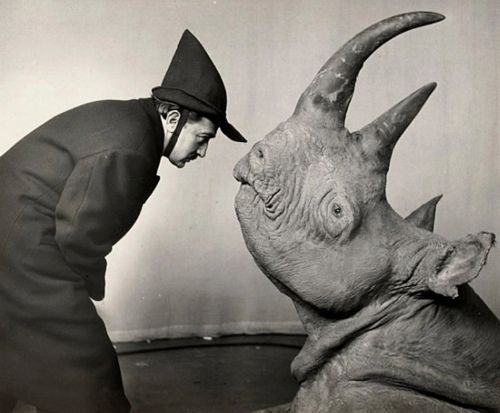 Dalí and rhinoceros, Philippe Halsman, 1956.