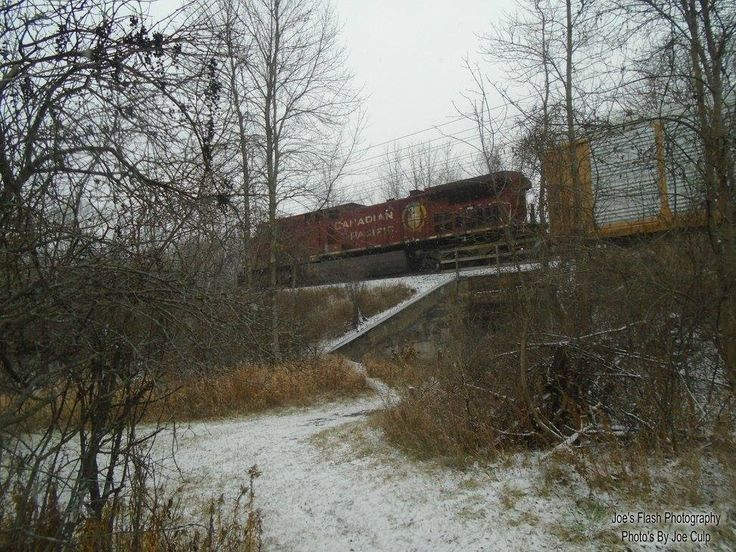 Passing CP Freight Train at Potters Creek Conservation.