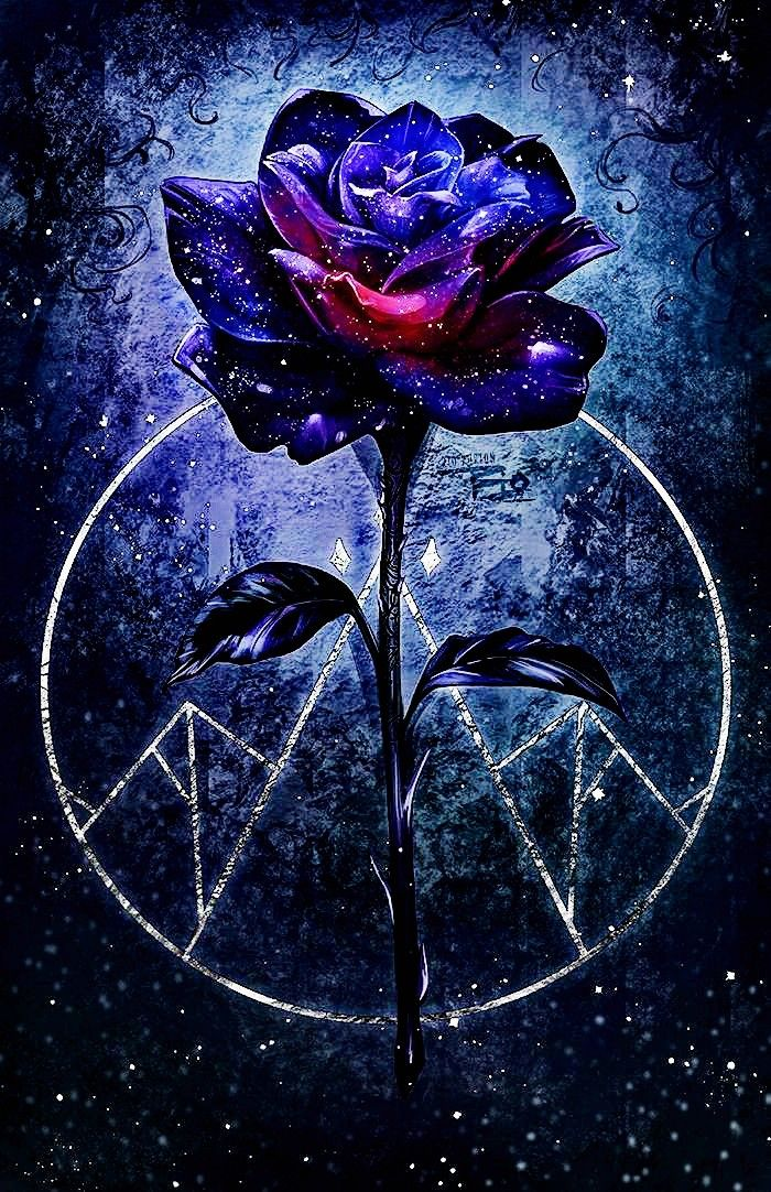 This Appears To Be Derived From A Court Of Thorns And Roses By Rio Burton Galaxy Flowers Cute Galaxy Wallpaper Purple Wallpaper Iphone
