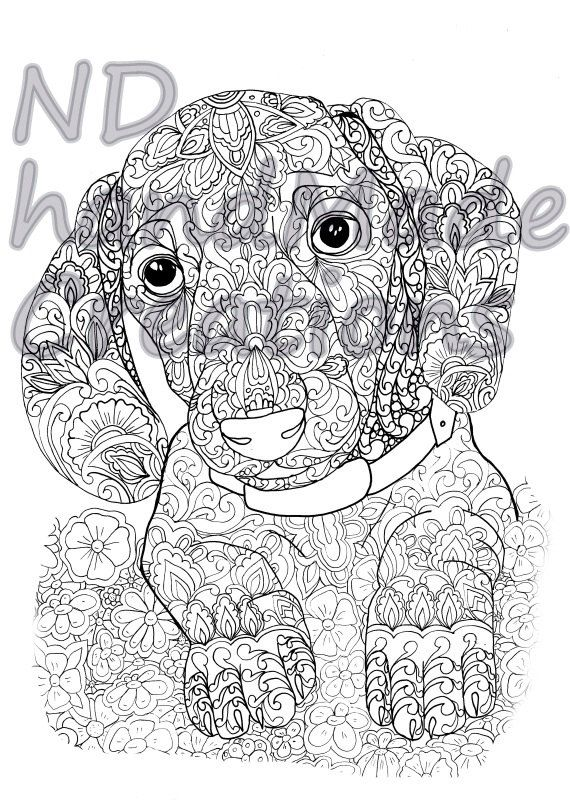 Paisley Doodle baby dachshund 1 dog puppy animal Pattern Printable Coloring Book Sheet Adults children JPG Instant Download Illustration Art - pinned by pin4etsy.com