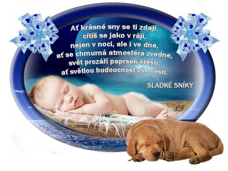 Dobrú noc a sladké sníčky :)