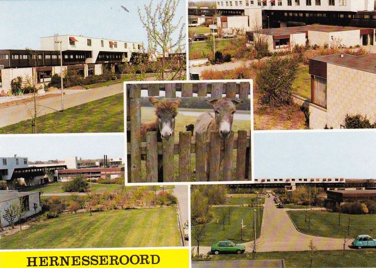 'Hernesseroord' Middelharnis