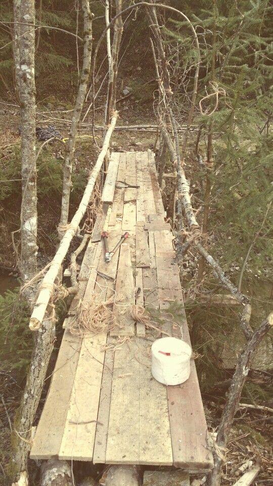 En bro över bäcken av spillvirke och fallna träd