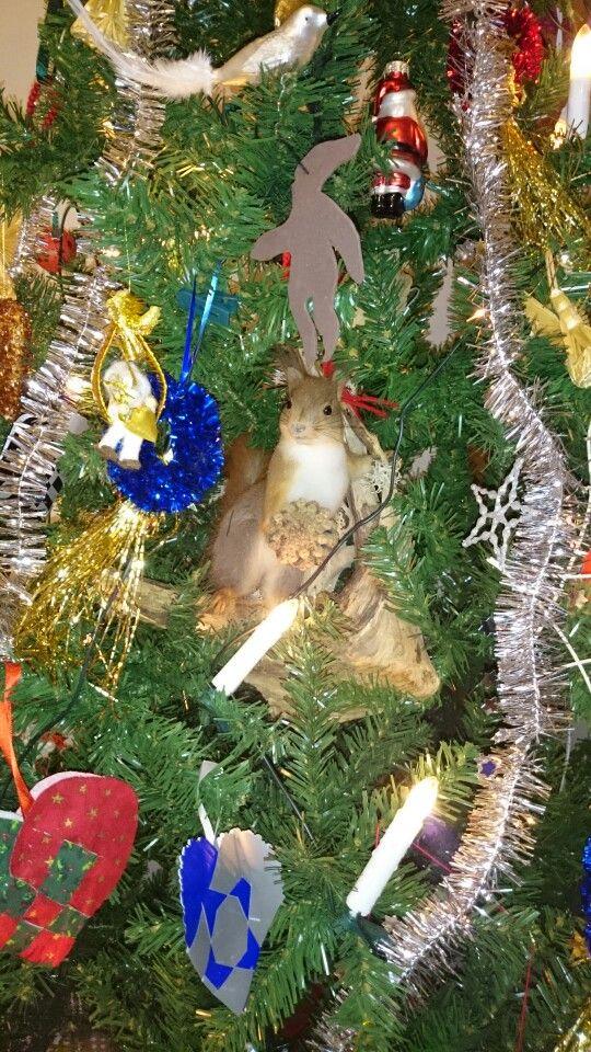 Ekorn i juletreet