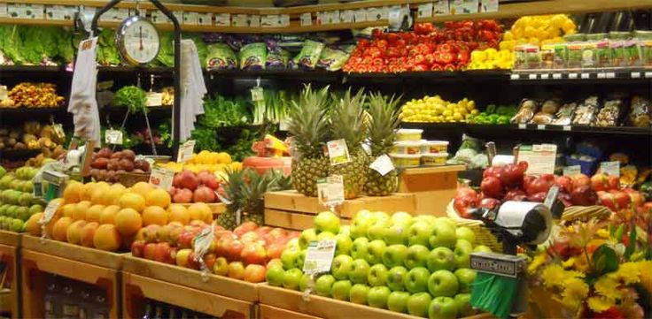 bisnis toko buah dan sayur organik