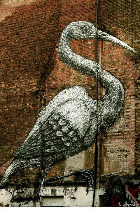 Bird - london