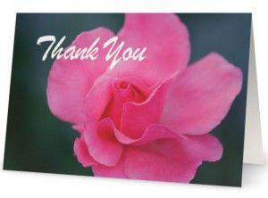 Pink Rose – Thank You