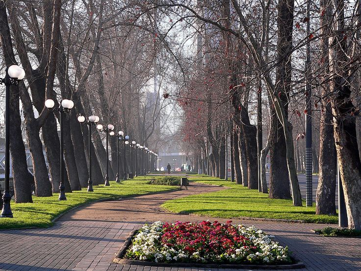 Parque Forestal - Chile