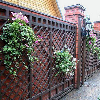 Вертикальное озеленение участка: фото конструкций, арки и перголы в саду, дизайн вертикального озеленения