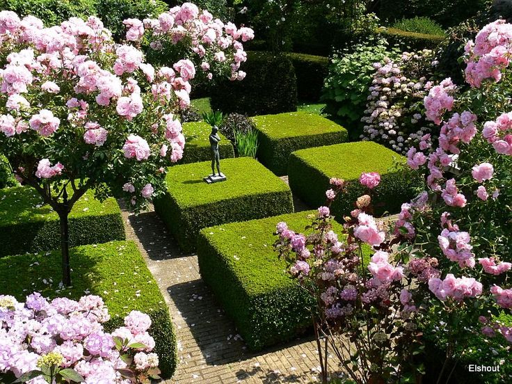 Secret Garden: 254 Best CLIPPED FORMS Images On Pinterest