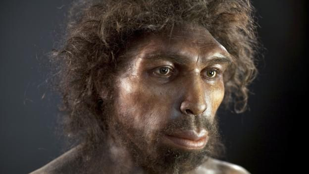 One day we might sequence even older species like Homo heidelbergensis (Credit: Credit: S.Entressangle/E.Daynes/SPL)