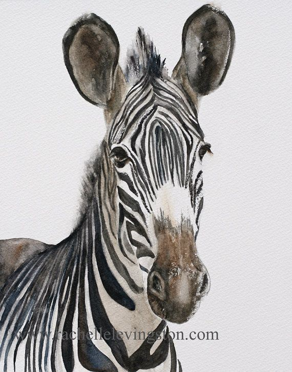Top 25+ best Zebra art ideas on Pinterest | Zebra painting ...