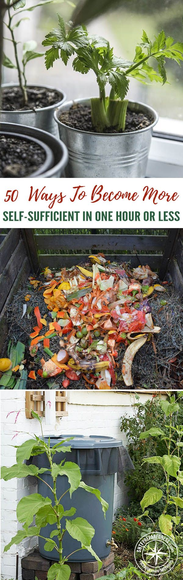 50 Ways to Become More Self-Sufficient in One Hour or Less — If you woke up one morning and you had no one to rely on but yourself, could you do it? Could you be entirely self-sufficient, with food, shelter, and other necessities? It is easy to take things for granted when they are so easily come by-a drive to the supermarket can solve so many problems.