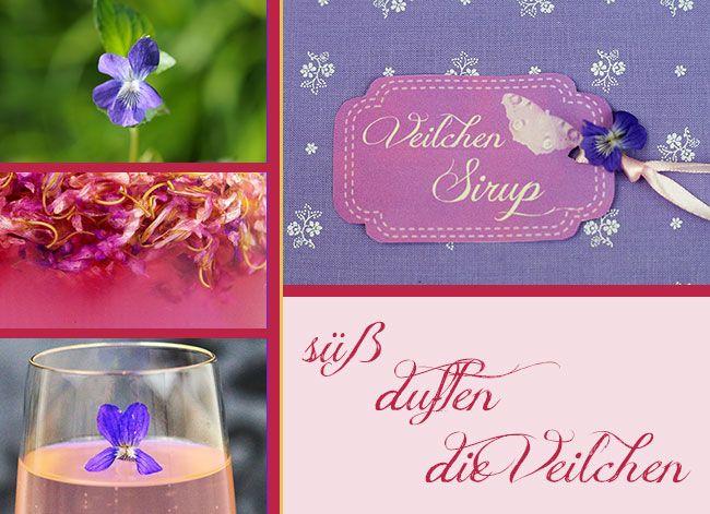 Um einen Veilchensirup selbst herzustellen braucht ihr Geduld beim Sammeln der Blüten, aber danach entsteht ein wunderbarer Sirup in einer betörenden Farbe.