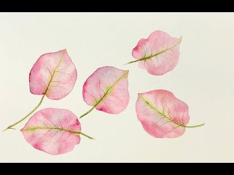Beginners Watercolors Bougainvillea Leaves Tutorial Youtube