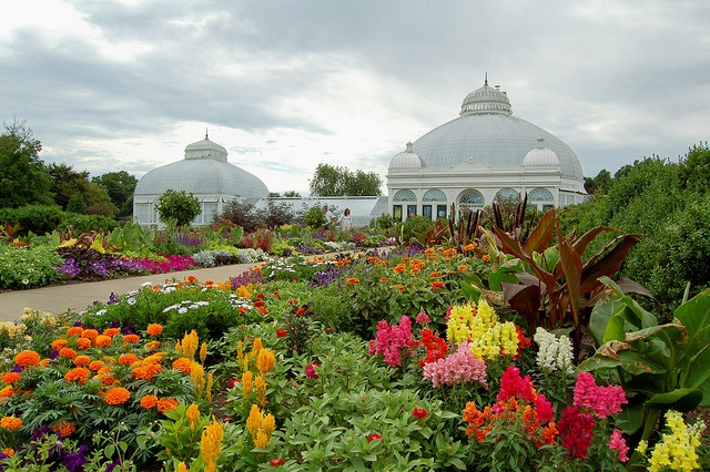 47 Best Images About The Buffalo Botanical Gardens On