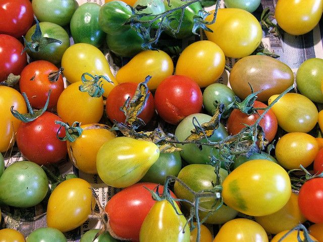 Natural (alkaline) fungicide for early tomato blight etc: 1 gallon water with 1 Tbs baking soda, and 2 1/2 Tbs vegetable oil added to it. Shake well, add 1/2 tsp of pure castile soap. pour the mixture into a spray bottle and go.