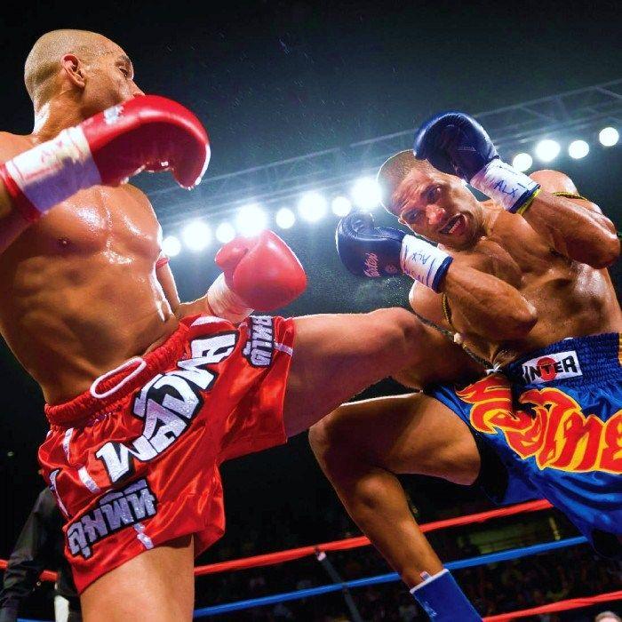 Muay Thai - Play Muay Thai game online. (Boxing, Martial arts, fight, ninja, gym, camp, Training, kung-fu, fighting, Thailand, best muay thai game).