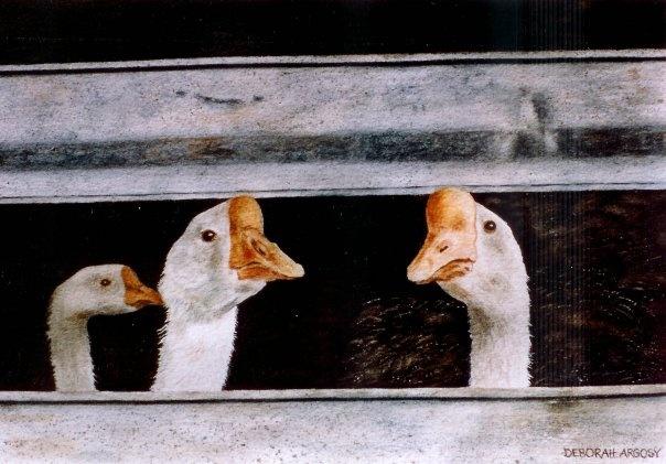 by Debra Argosy: Poultry, Debra Argosy