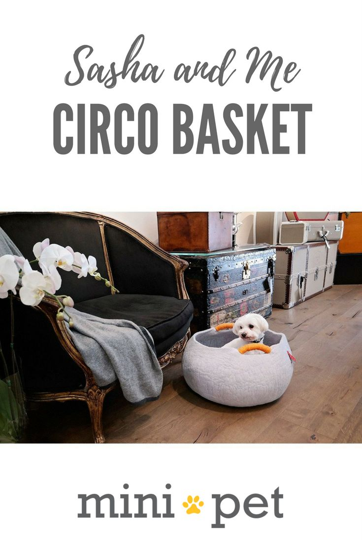 """[SALE] From our friends at Sasha and Me, we present the all natural, hand made, super cosy Circo Basket. For cats and small dogs who love to feel """"enclosed"""", on cold winter nights, or just...because!   Also works great as a toy storage basket, or for blankets, or, anything, really!"""