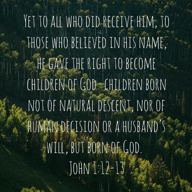 John : 12-13