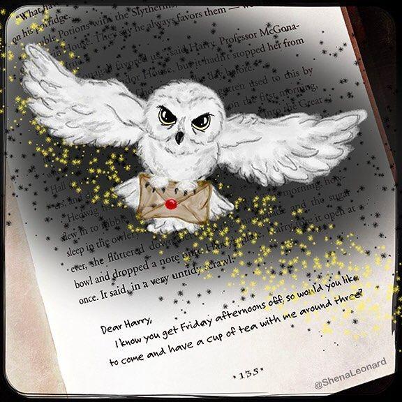 Shenaleonard Shenaleonard On Instagram Today S Book Doodle Owl Post For Harry I Finished My Harry Potter Owl Harry Potter Train Harry Potter Magic