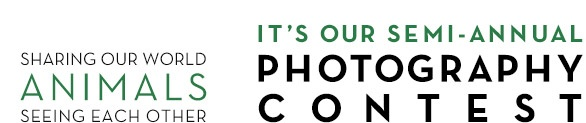Santa Fe Photographic Workshops Photography Contest