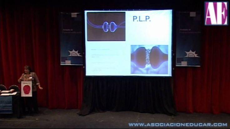 ¿Qué necesita el cerebro para aprender? Nse. Prof. Mirta Polla Rossi. Ne... Fabulosa presentacion.mis felicitaciones.