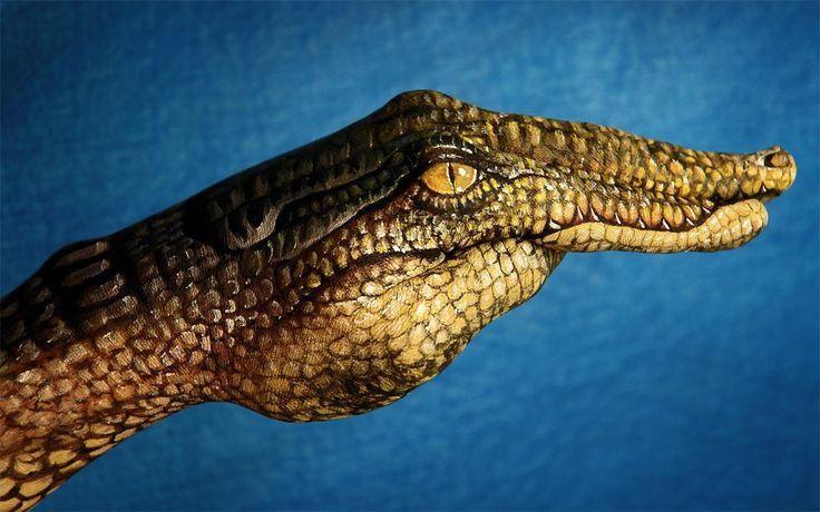 Mulher obesa cai em cima de crocodilo e fere-o com gravidade
