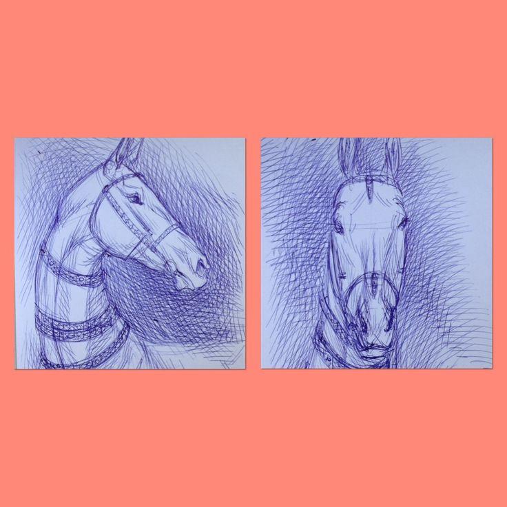Графика- почеркушки шариковой ручкой. #графика #арт #набросок #лошадь #ахалтекинец #ахалтеке #horse #ahalteke #eauineart #art #equine #sketch