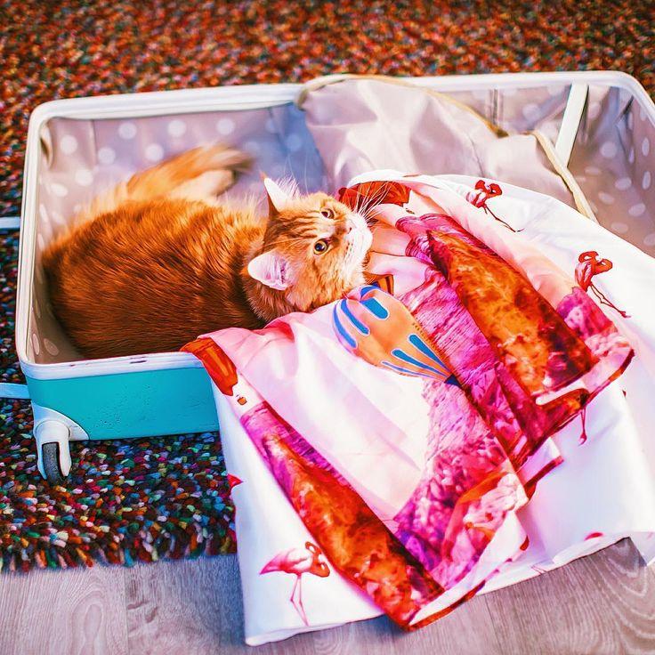 Sanatlı Bi Blog Rus Fotoğrafçı Kristina Makeeva'dan İlham Veren 24 Fotoğraf 19