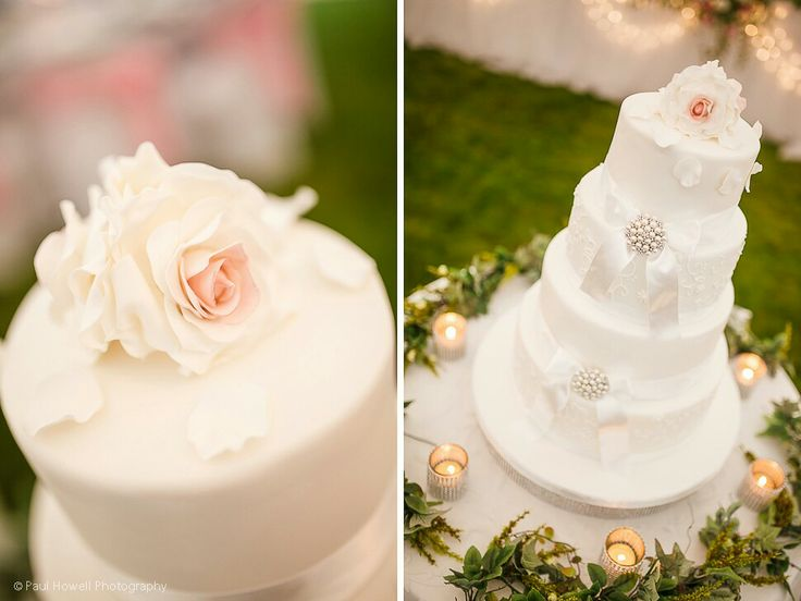 Wedding Cake x