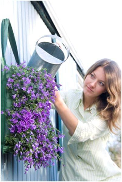 17 beste idee n over kleine ruimte tuinieren op pinterest groenten kweken tomaat tuin en - Groenten in potten op balkons ...