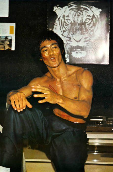 Bruce: White Tigers, Heroes, 3D Character, Bones, Book, Dragon, Martial Art, Ass, Bruce Lee