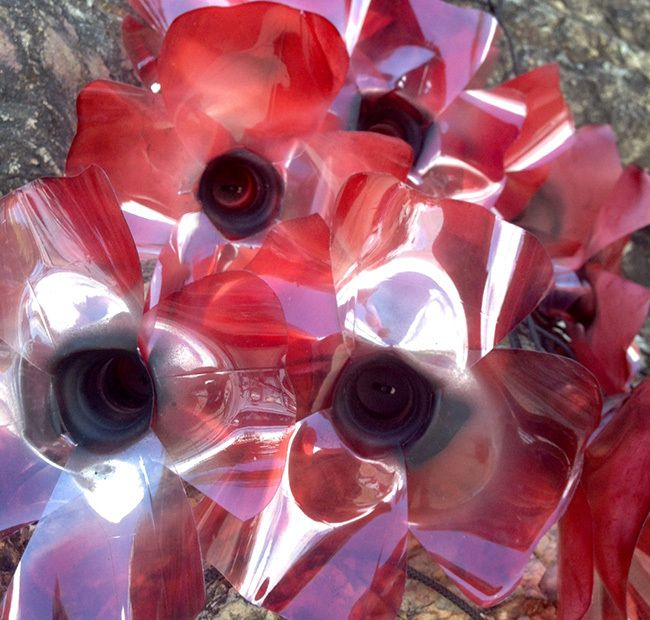 A very special ANZAC Poppy Project + The Art of Making Music