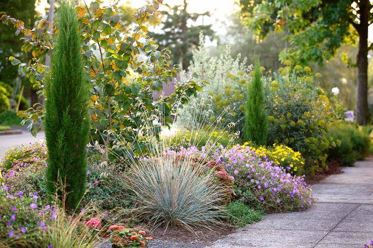 17 best images about park strip on pinterest gardens for Curbside garden designs