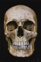 DAMIEN HIRST | The Skull Beneath the Skin