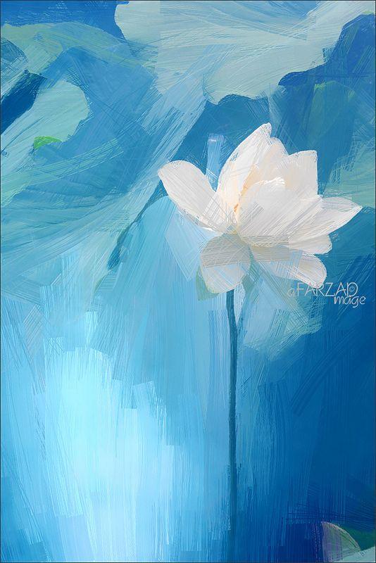 Lotus Flower - Image Based Oil Painting (drawing) effect