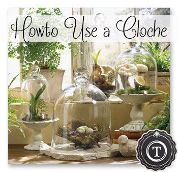 Interesting and beautiful ways to use a cloche!