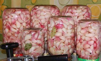 Eingelegter Knoblauch ohne Einmachen, der über das ganze Jahr genutzt werden kann und wie ein frischer ist | Top-Rezepte.de