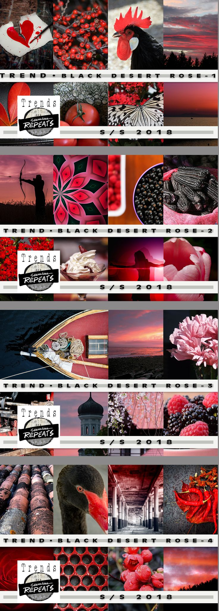 TREND - Black Desert Rose Everything you need to create your own trend board, mood board or other presentation or product.      52 - Creative Commons CC0 Images - average size approximately 1200px x 1900px     4 - Pantone Color Palettes (CMYK - Coated)     4 - CMYK (Pantone Color Bridge) .aco files for each color palette