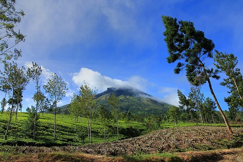Mount Sindoro    Jawa Timur, Indonesia