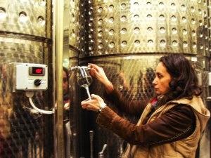 Winetasting at Liliac Winery (Batos, jud. Mures)
