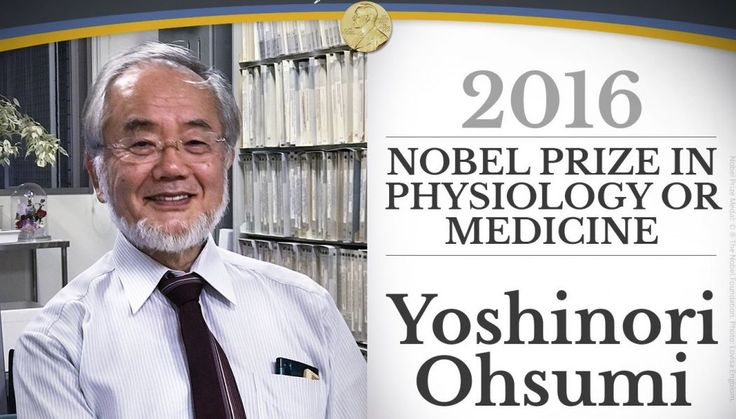 """Japanese Nobel Prize Winner Discovers """"Cannibal"""" Cells Feared to Be the Biggest Cause of Chronic Disease Among Boomers"""