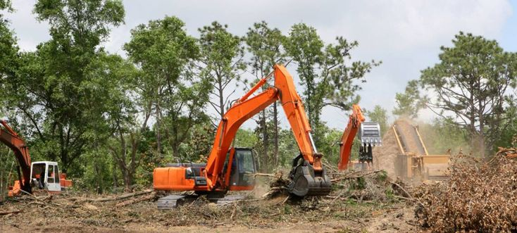 Landclearing services ensure the removal of trees and