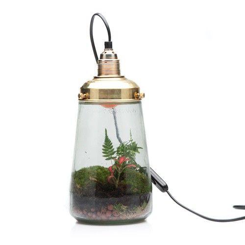 Spruitje lamp Pickles