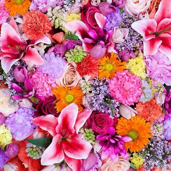 59 best DIOR FLOWER WALLS images on Pinterest | Flower wall ...