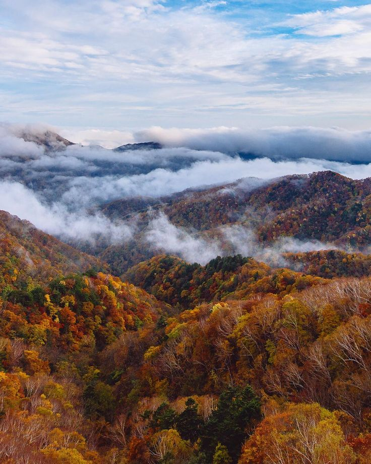 We may not have had the brilliant colours of autumn this year in Toronto but heres a photo for my friends @Melissa and @aleporte Who just arrived in Japan where autumn is well under way there. I hope you get to see some great colours over thereGo up to the Japanese alps in Nikko to get great views like this! . #autumn #fall #leaves #autumnleaves #trees #autumncolors #leaf #fallcolors #Japan #mwjp #instagramjapan #ig_japan #gf_japan #igersjapan #welltraveled #ExploreEverything #Enroutemag…