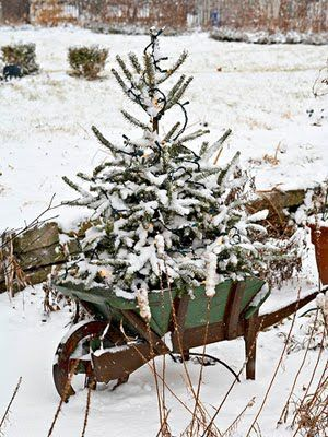 Use an old artificial tree to achieve this look, so rustic.